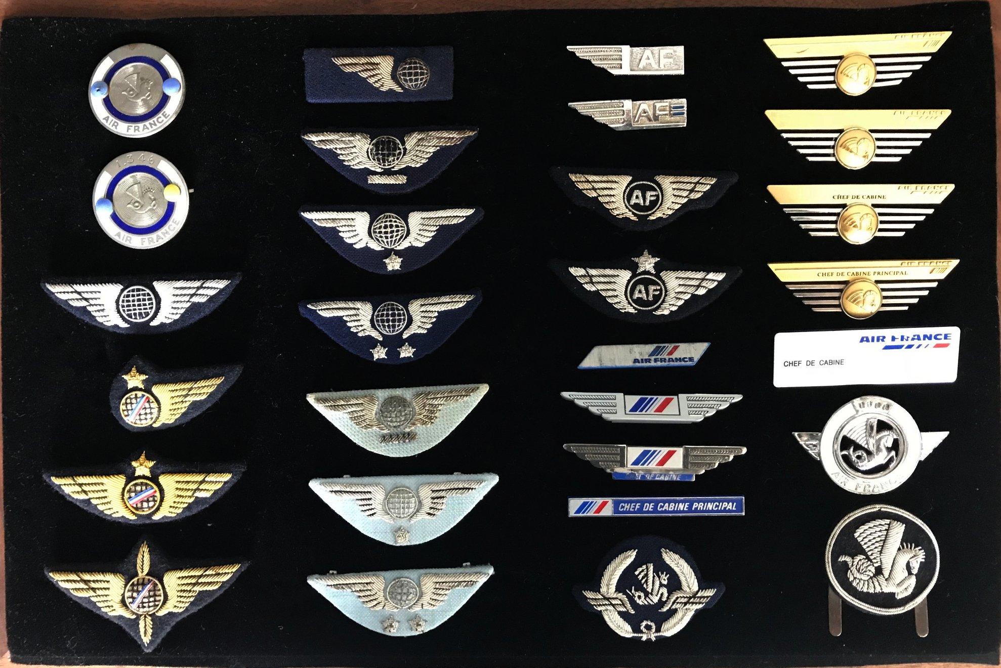Top Insignes AIR FRANCE PNC PNT hotesse steward badges BU31